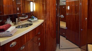 aft lavatory - Gulfstream G550 for sale by Guardian Jet